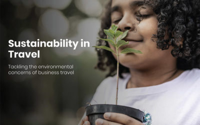 Sustainability in Travel